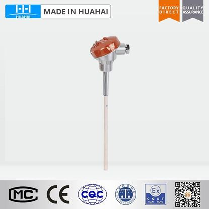 Picture of WRP-130 No fixed Platinum/Rhodium thermocouple